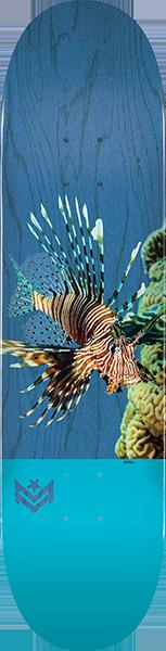 ML DECK 243/K-20 -8.25 POISON LION FISH BLUE