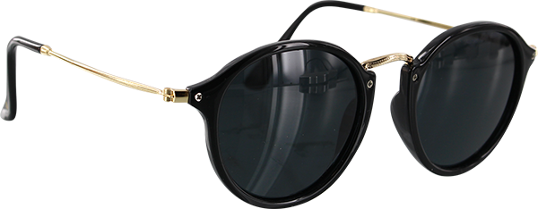 GLASSY KLEIN BLK/GOLD SUNGLASSES POLARIZED